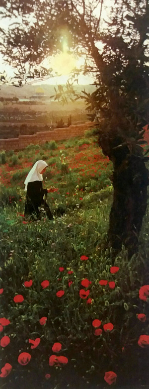 Image of a Benedictine nun on the mount of olives.